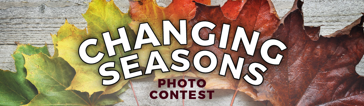 Changing Seasons Photo Contest